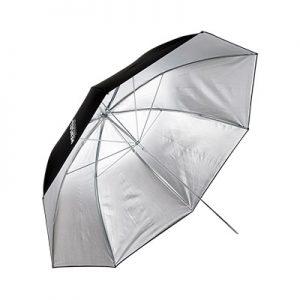 چتر نقرهای هنسل